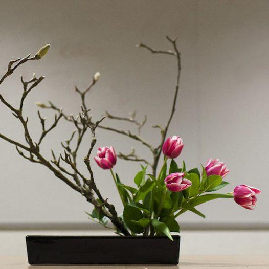 Ikebana: Introduction to Japanese Flower Arranging