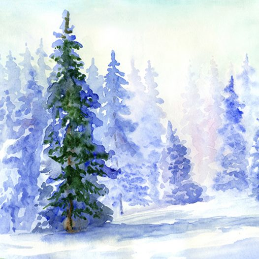 Discover Watercolors ~ (Ages 9 – 15)