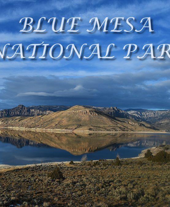 "Main Gallery: ""Blue Mesa National Park"" by Teresa Golden"